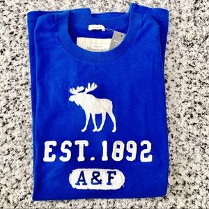 Abercrombie & Fitch Blue Muscle Tee